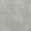 Image du produit 30.1X60.4 CONCRETE LIGHT GREY NAT NON RECT