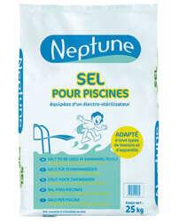 Image du produit SELS PISCINE PASTILLES NEPTUNE (SAC 25KG) ANCIEN 101510